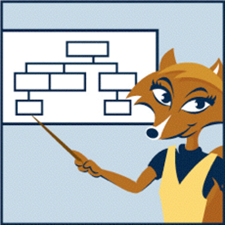 Flow chart fox